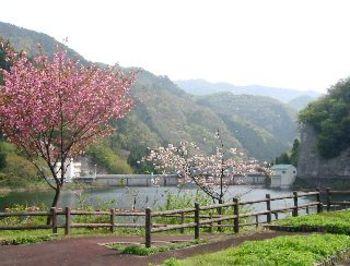 Sajigawadam